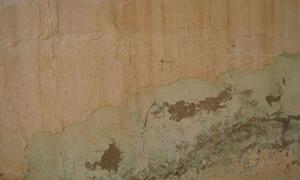 peeling from plaster walls. Black Bedroom Furniture Sets. Home Design Ideas